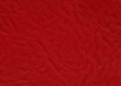 CLASSIC Dragon Red lederen vloeren en lederen wanden